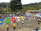 himarayasugi03
